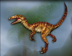 Carnivores Velociraptor