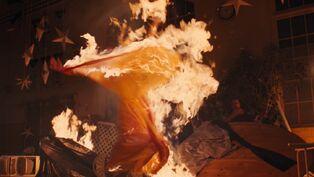 Tina burning