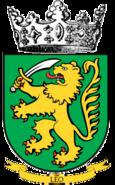 12th Infantry Cie insignia