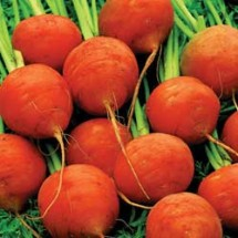 File:Carrot-paris-market-lg-215x215.jpg
