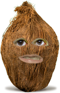 File:THFAOAO coconut.png