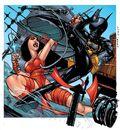 Elektra vs batgirl