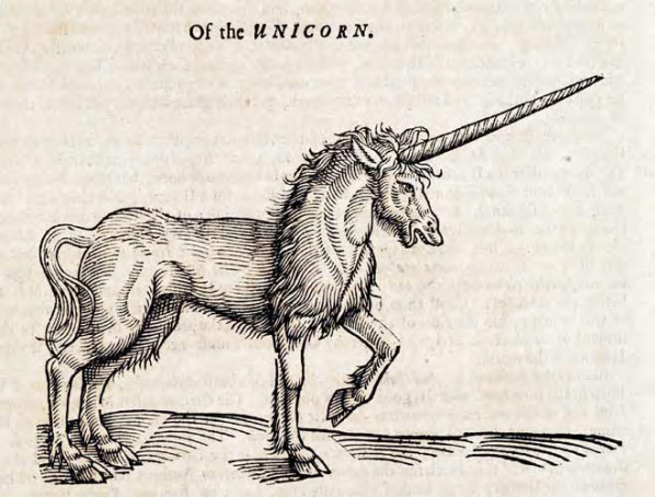 File:Unicorn - 01.jpg