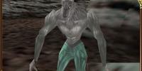 Werewolf/Enemy Data