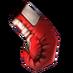 Champion Glove