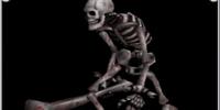 Skeleton/Enemy Data/Page 2