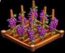 File:Grapes 01.png