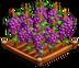 GrapeCrops