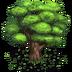 TreeOak 01 Icon
