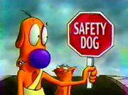 Safety Dog