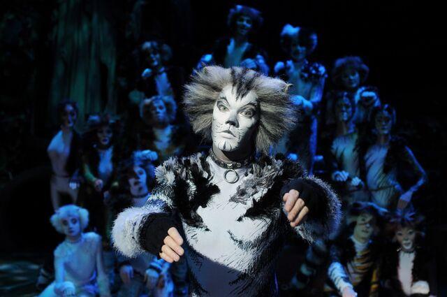 File:Munkustrap Ben Palmer Cats Musical UK Tour.jpg
