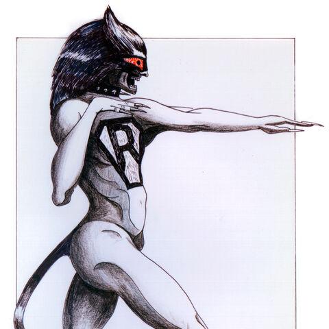John Napier Rumpus Cat design