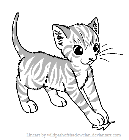 File:Apprentice Tabby Lineart by WildpathOfShadowClan.png