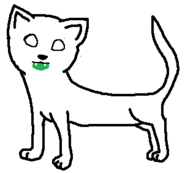 Medicine Cat, Male, Short