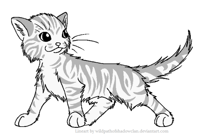 File:Longhaired Tabby Male by WildpathOfShadowClan.png