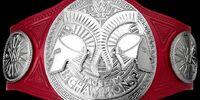 Raw Tag Team Championship (New-WWE)