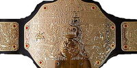ACW World Mayhem Title (Aggression Championship Wrestling)