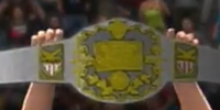 New-NAW Intercontinental Championship