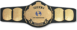 File:OPW Title.png