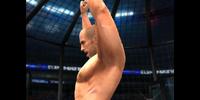 New-WWE Elimination Chamber 7