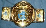 WCW Championship Belt