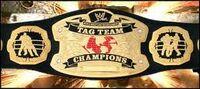 FvH Tag Team Championship V2