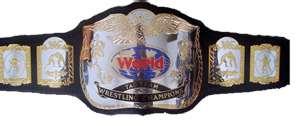 File:FvH Tag Team Championship.jpg