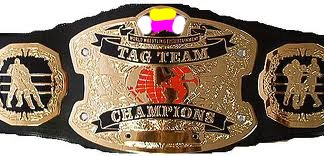 File:Wrestling Heaven World Tag Team Championship.jpg
