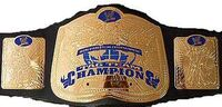 VWF Tag Team Championship V1