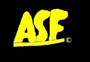 File:ASFflashlogo.jpg