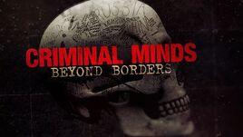Criminal minds beyond borders