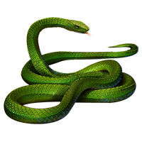 File:Huge item greenmamba 01.png