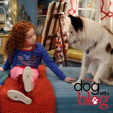 File:Chloe&Stan.jpg