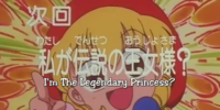 Episode 24: I'm the Legendary Princess?