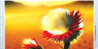 Ravita Flower