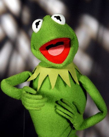 Kermit the frog fictional characters wiki fandom for Bunny williams wikipedia