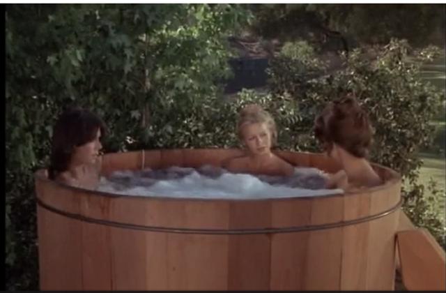 File:Hot tub.png