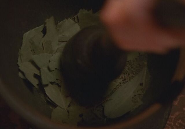 File:Potion ingredients.JPG