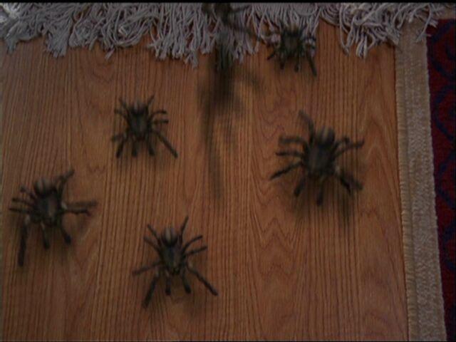 File:Arachnophobia.jpg