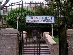 CrestHillsHome