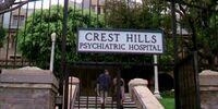 Crest Hills Psychiatric Hospital