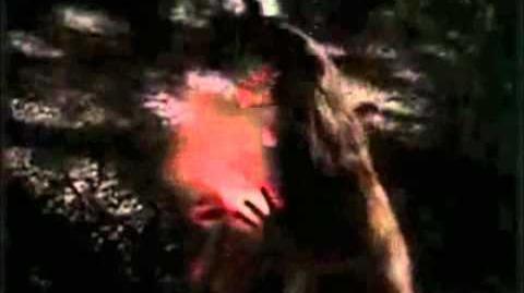 Charmed - 10x04 - The Boy Who Cried Wendigo Clip