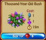 Thousand year old bush