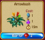 Arrowbush