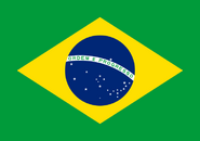 Brazilian Flag from 1960