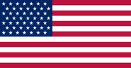 49 Star Flag