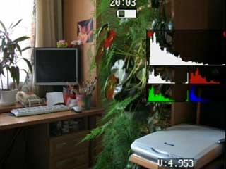 Histo RGB all.jpg