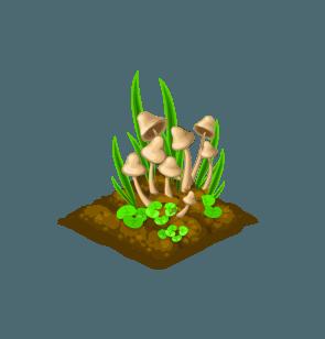 File:Seedling-Mushrooms.png
