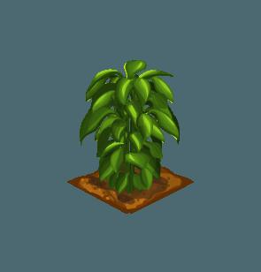 File:Crop-Basil.png