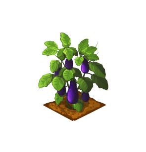 File:Crop-Eggplant.png